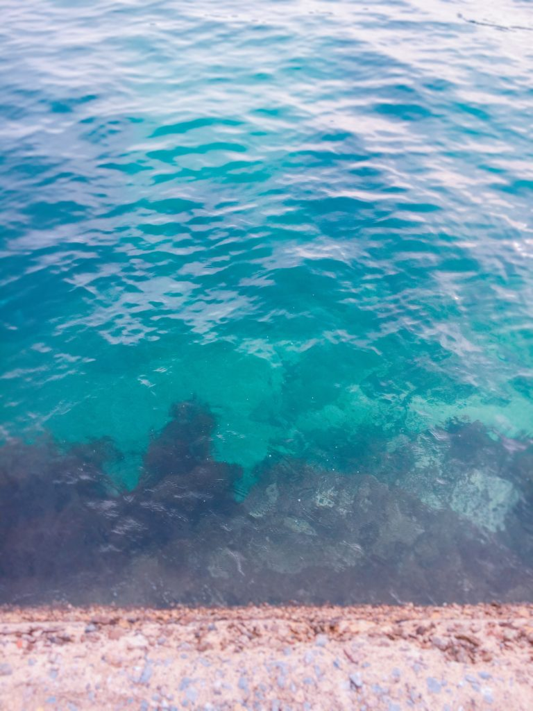 守谷漁港ちかくの海はうつくしい緑色