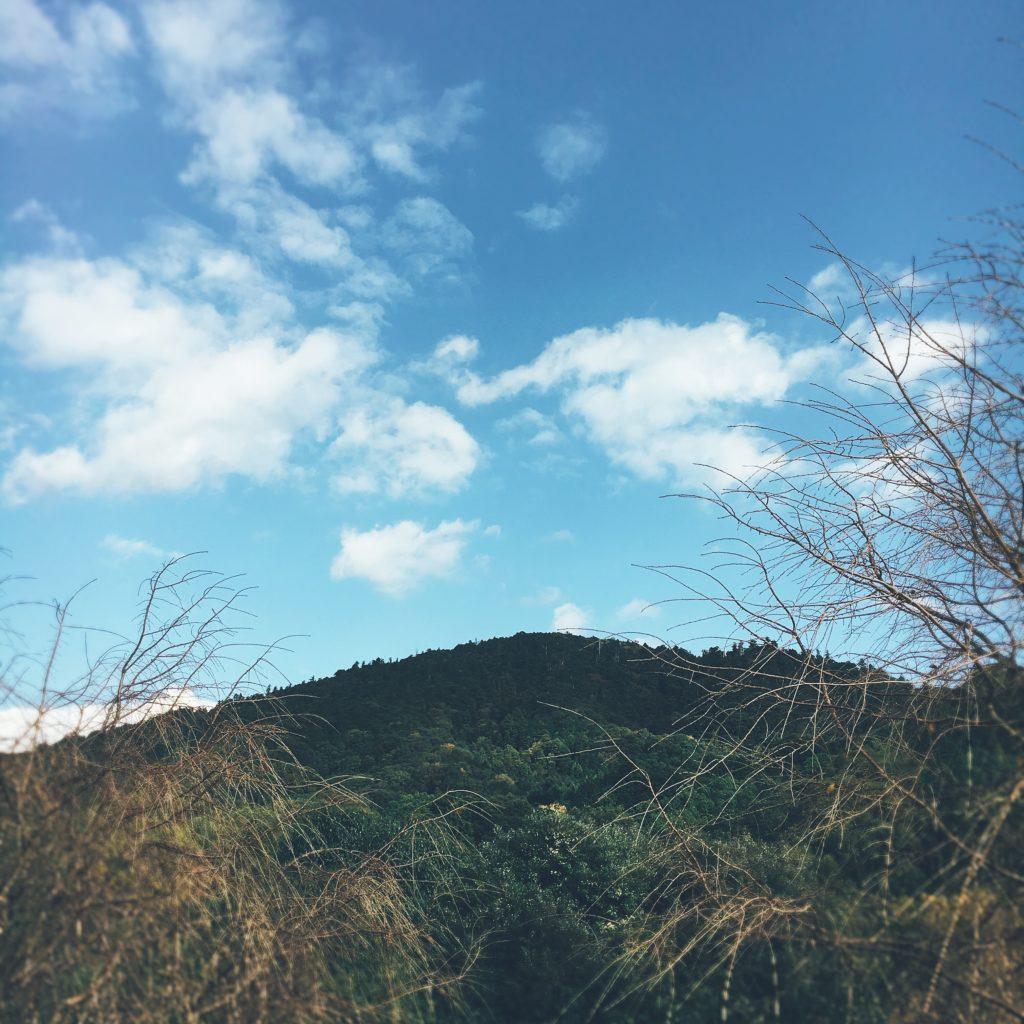 奈良 大神神社の三輪山登山