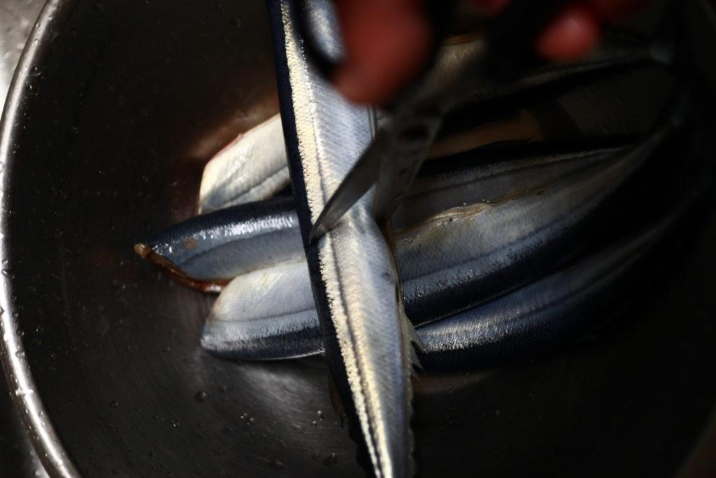フィスラーの圧力鍋で、さんまの梅生姜煮レシピ