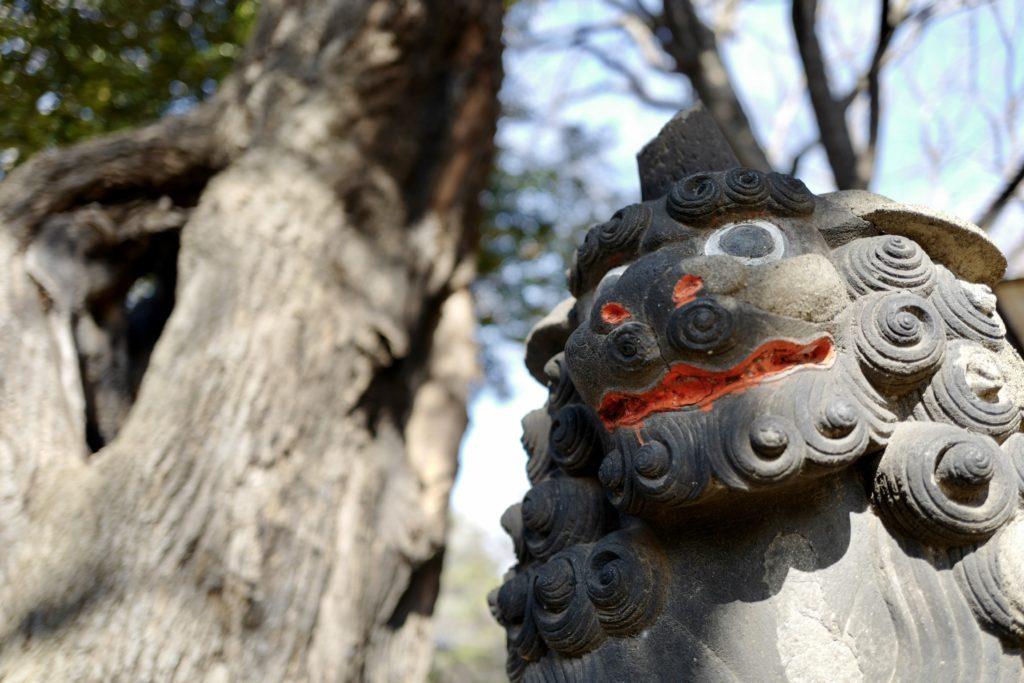 LeicaQ作例:西日暮里諏訪神社