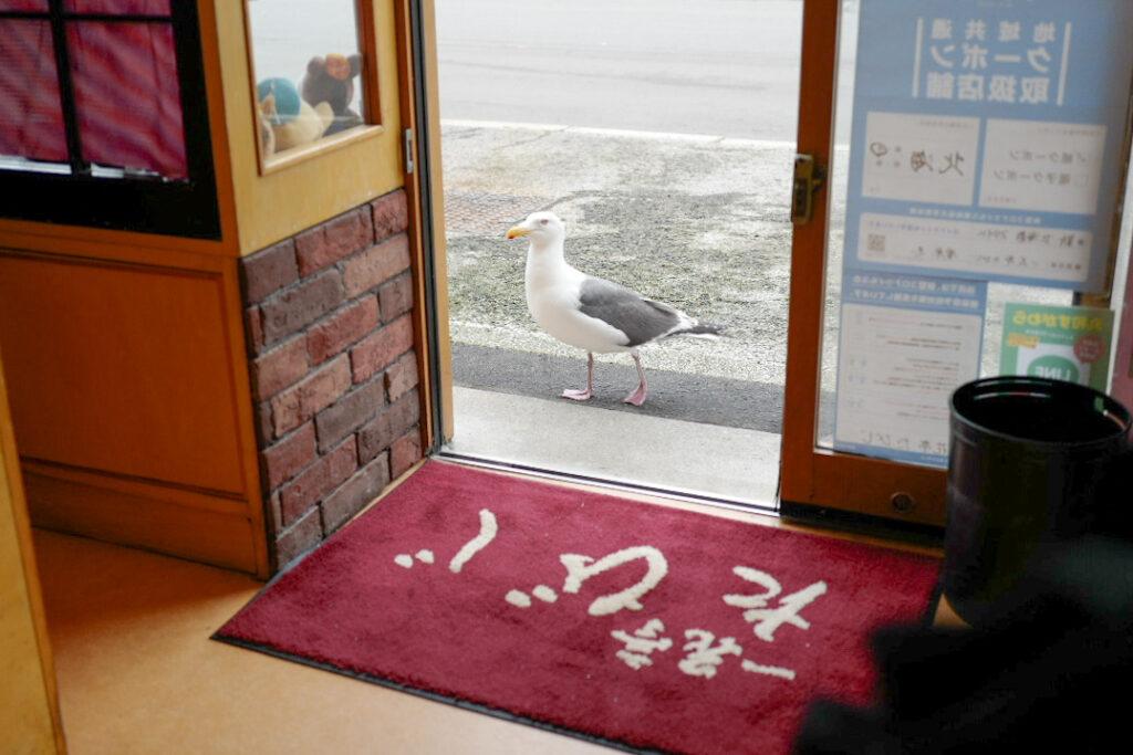 函館4泊5日ひとり旅で食べたおいしいもの&おいしいお店12:函館朝市「たびじ」