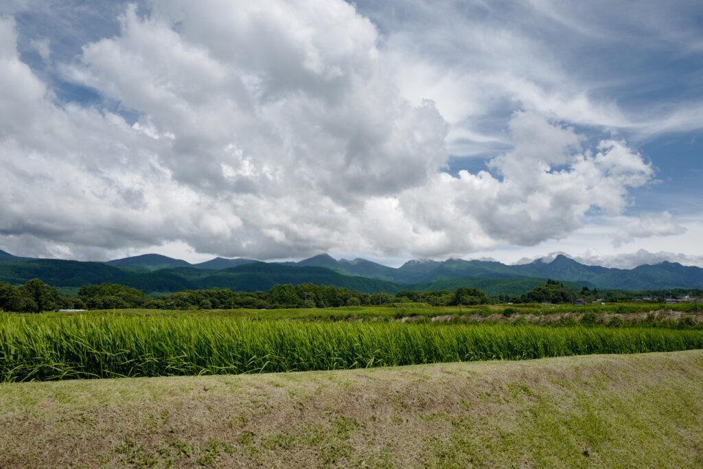 夫婦ふたり長野ドライブ旅1泊2日:八ヶ岳エコーライン