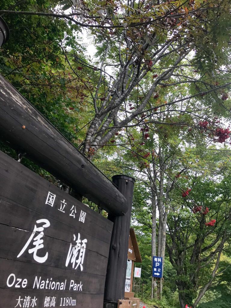 尾瀬ヶ原3泊4日ソロハイク旅の記録 1日目:新宿~大清水~一ノ瀬~尾瀬沼